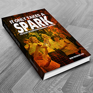 Concept Graphic Deaign and Marketing Gold Coast Book Design It only takes a spark - Gallery 20